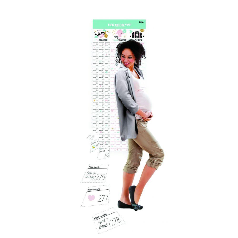 Calendario Bebé En Camino (en inglés)