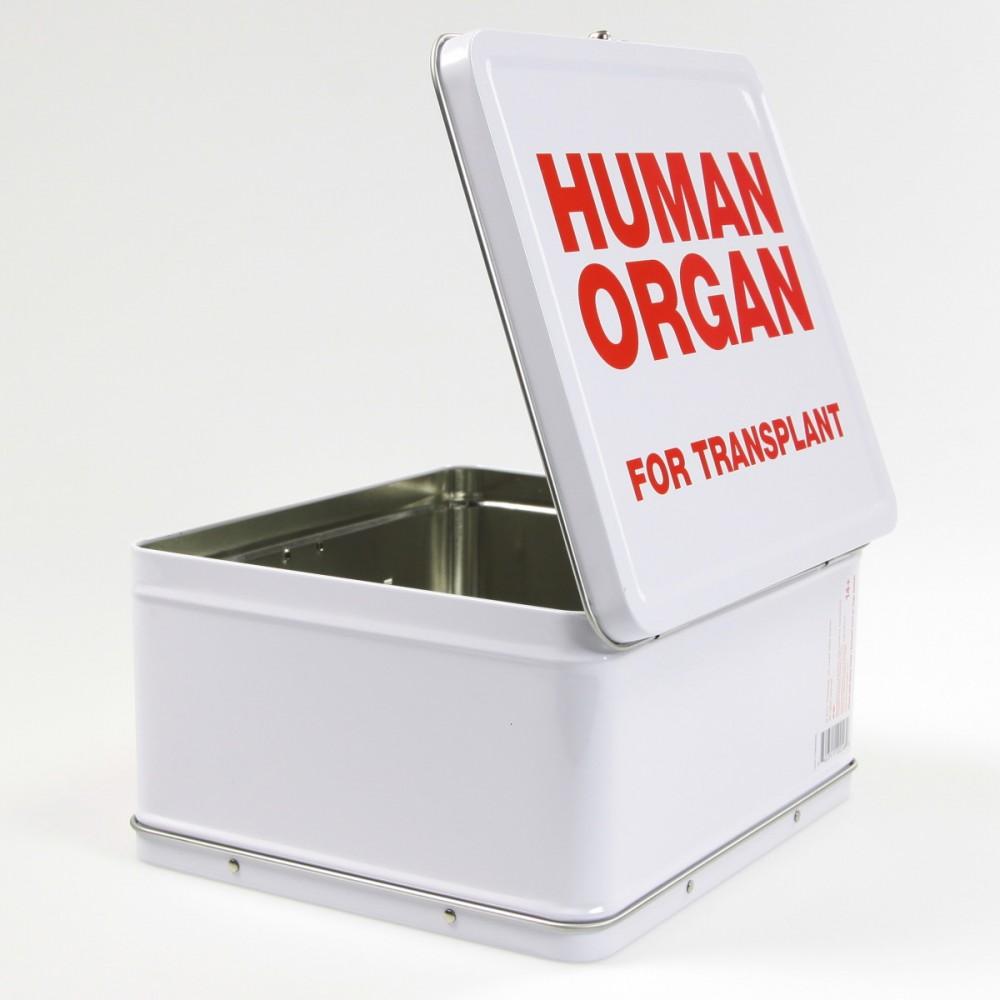 Lonchera Portacomida Organos Humanos